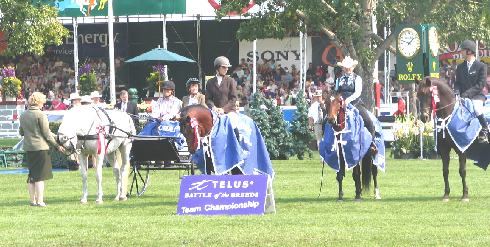 2006 Spruce Meadows Battle Of The Breeds Champions